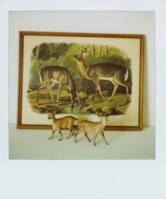 Better deer